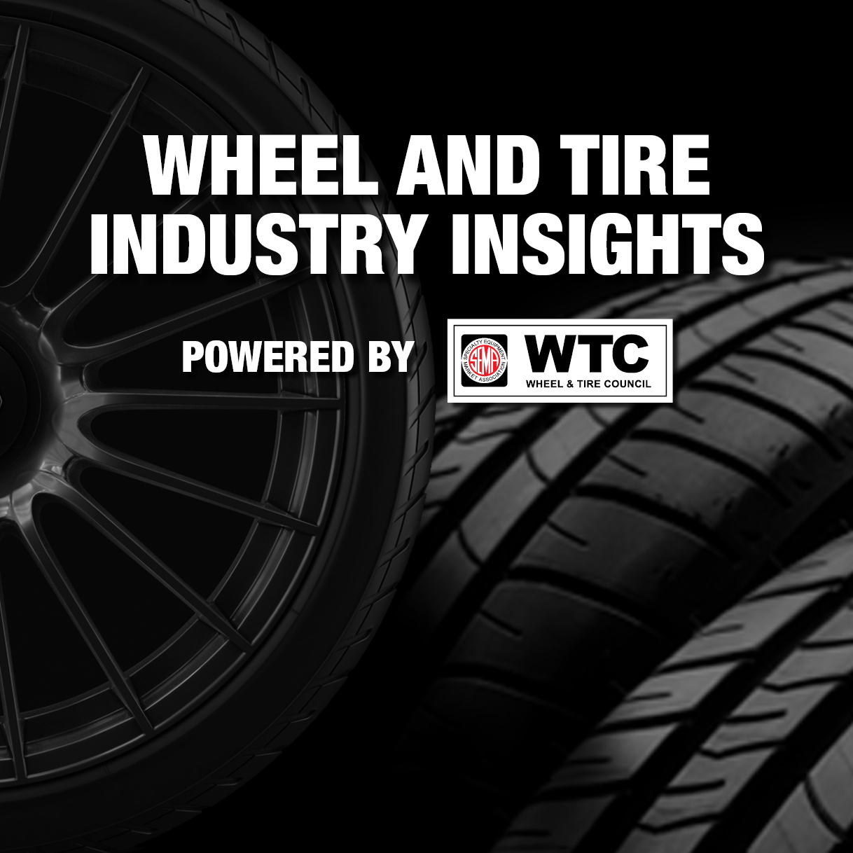 Wheel and Tire Industry Insights, powered by WTC